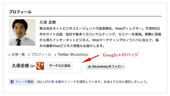 ブログにGoogle+のバッジを設置することでGoogle検索に記事をあなたのものだと認識させる。